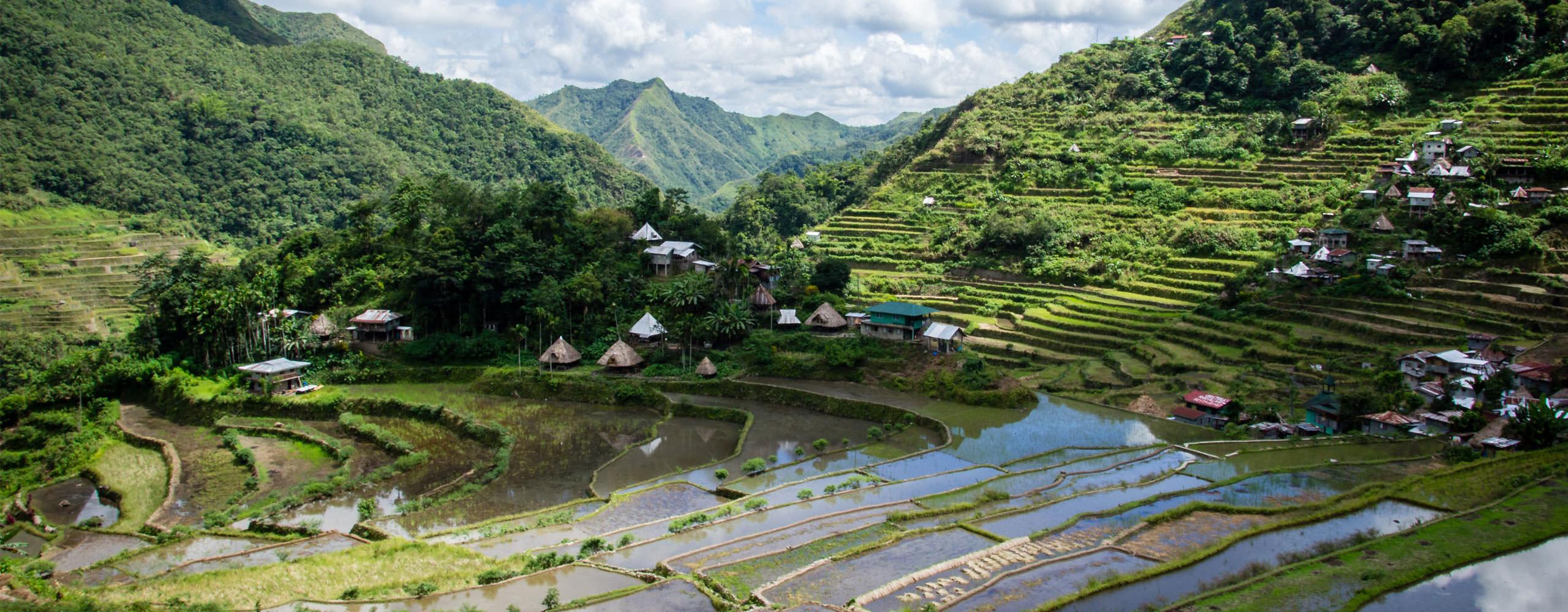 טיולי ג'יפים בפיליפינים - נופי טרסות האורז