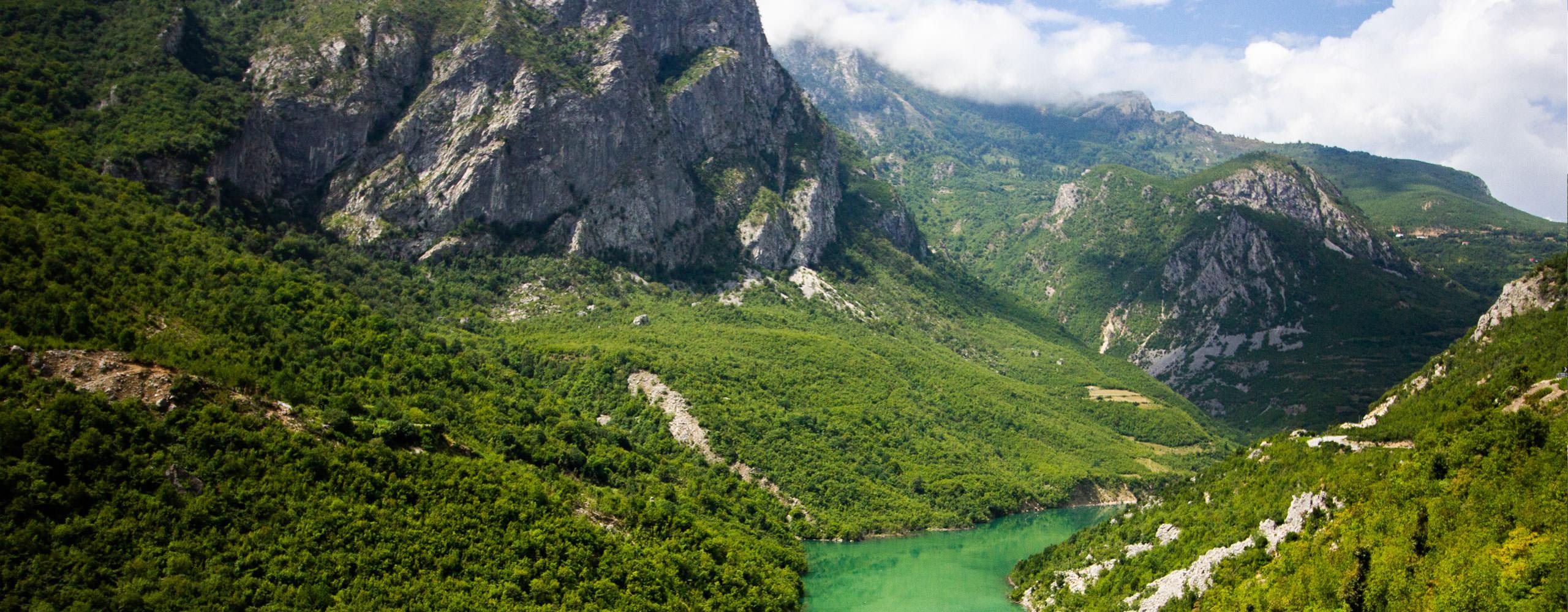 כתבות על אלבניה