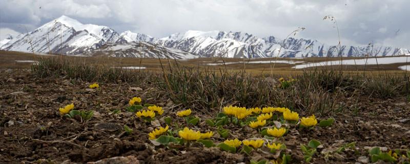 6 מקומות שאסור לפספס בטיול לקירגיזסטן